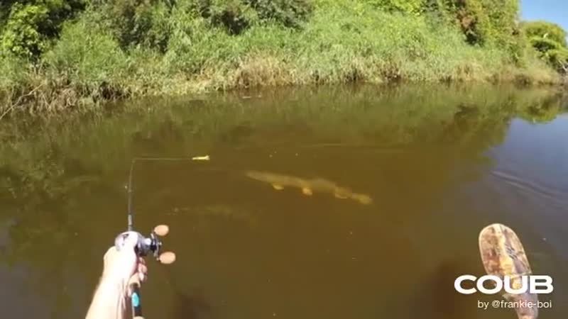 Fishing A Duck Lure For MONSTER Pike