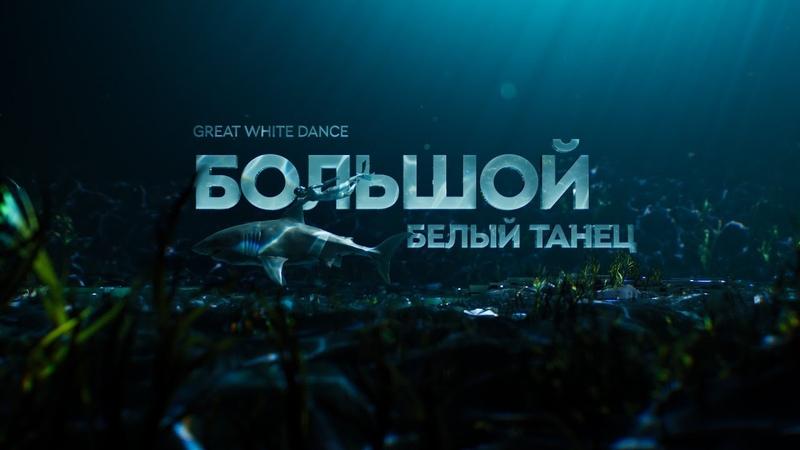 Большой белый танец документальный фильм про акул 12