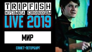 TripFish - LIVE - Мир