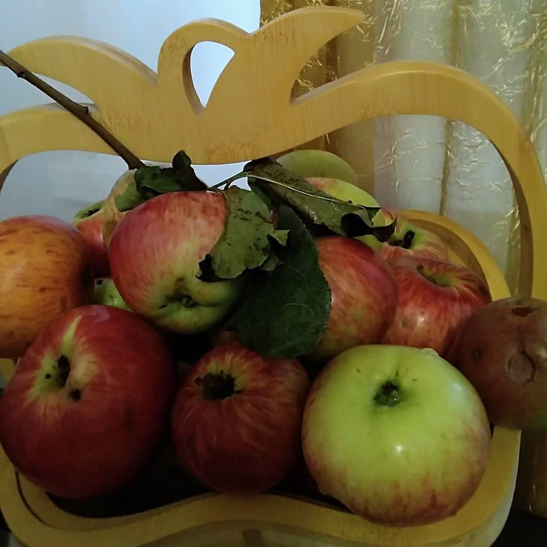 Сегодня православные верующие отмечают праздник Преображения Господня. Его ещё называют Яблочным спасом.