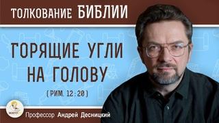 Горящие угли на голову (Рим.12:20)  Профессор Андрей Сергеевич Десницкий