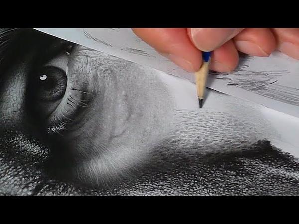 Desenhando textura de pele - Samuel Torres