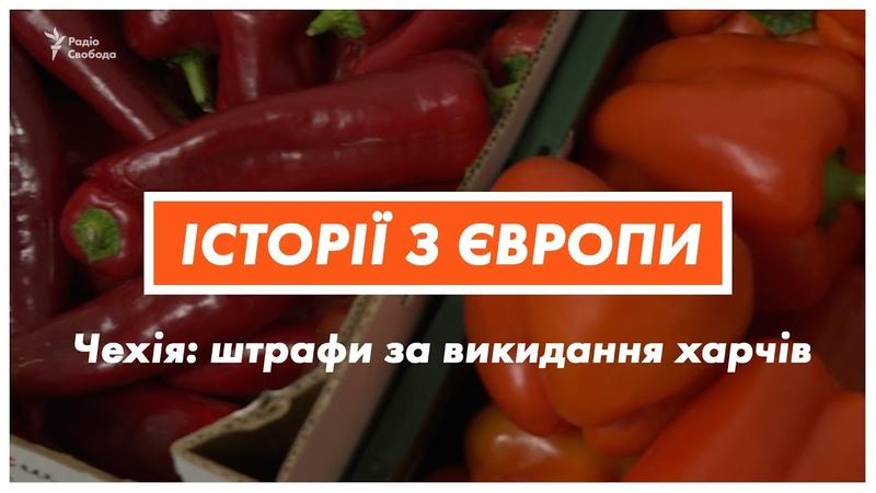Чеська влада зобов'язала великі супермаркети не викидати харчі на смітник
