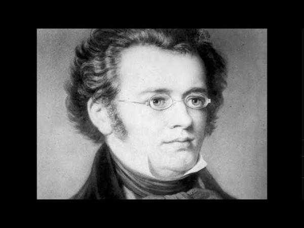 Schubert-Liszt Ständchen Mikhail Arkadev, piano Шуберт-Лист Серенада играет Михаил Аркадьев