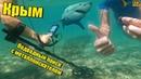 Крым 2019 Поиск с металлоискателем Equinox 800 Подводный поиск золота Пляжный коп Crimea