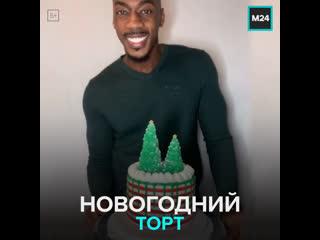 Делает новогодний торт — Москва 24