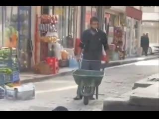В Турции рабочий дождался, когда бездомная кошка напьется из лужи