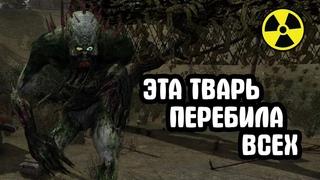Эти твари населяют локацию. Смотр обновления Call of Chernobyl Demosfen.