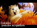 Коты-Воители смерти