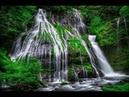 Шум красивых водопадов с пение птиц и красивой музыкой