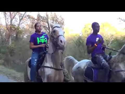 Trail Ride in Hooks Texas 2020 ponyboy