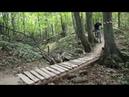 Гонка 38 Попугаев в Бутовском лесу Butovo Chess Park