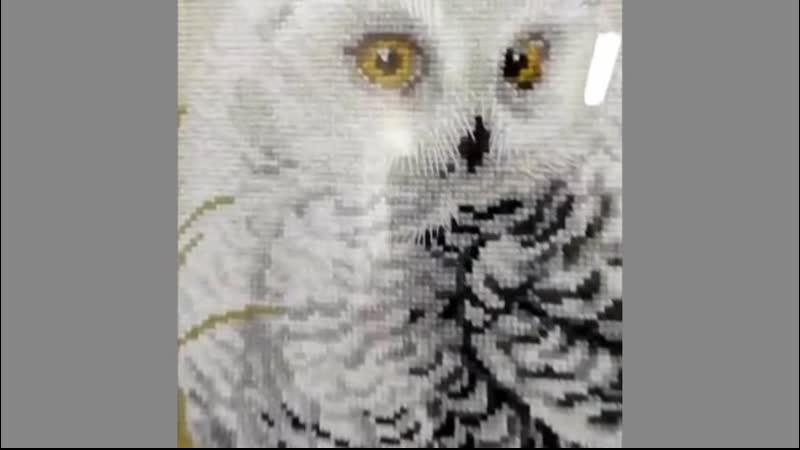 Лаконичный декор вышивки с полярной совой